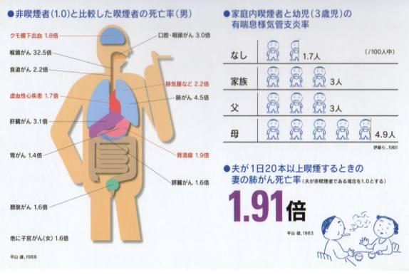 喫煙者の死亡率